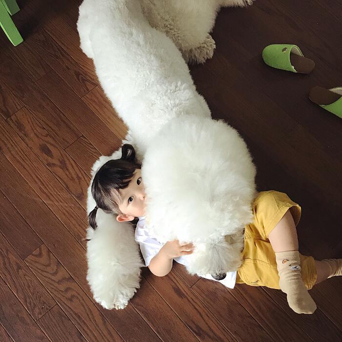 Amicizia bambina di due anni e barboncino gigante