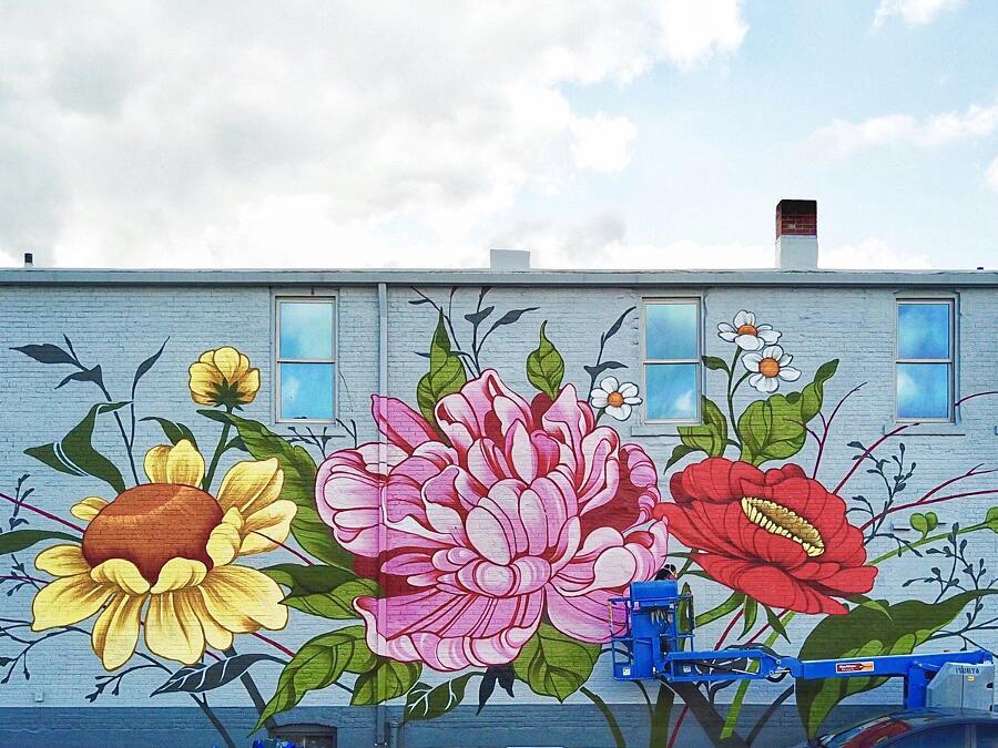 Street Art Fiori Ouizi Detroit Buffalo