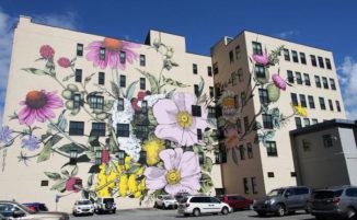 Decora gli edifici con composizioni floreali come fossero grandi tele