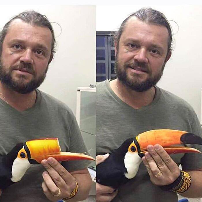 Tucano Ferito Riceve Becco Stampato 3D