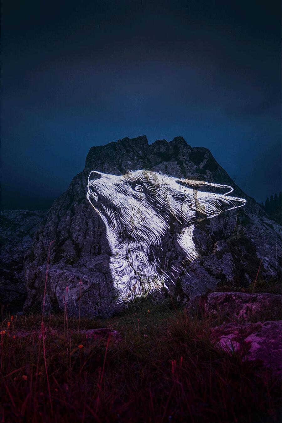 Proiezioni immagini animali in via di estinzione, Julien Nonnon Crying Animals