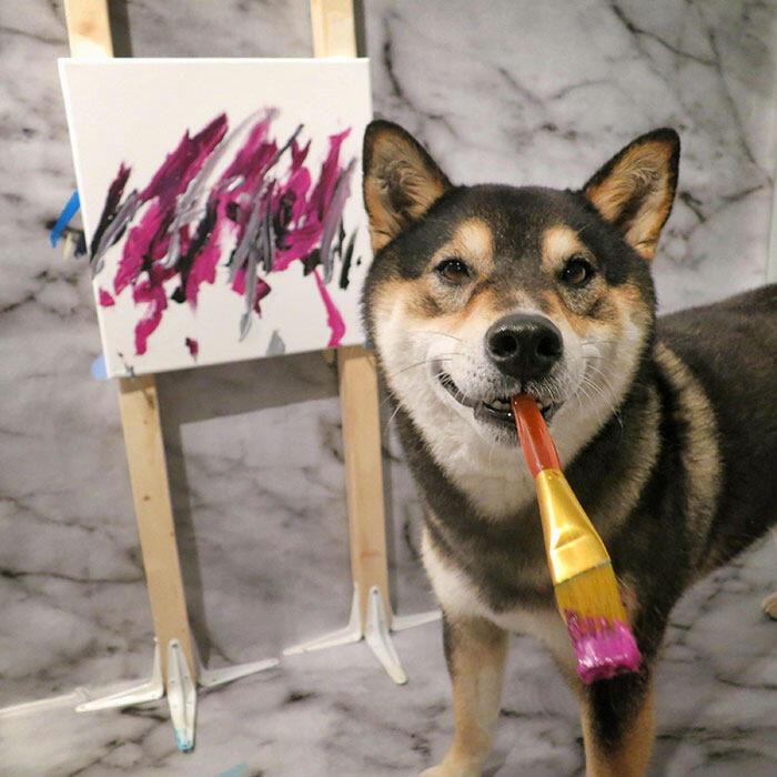 Insegna il suo cane a dipingere e vende i quadri per 5.000 dollari