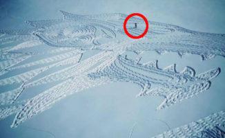 Artista disegna sulla neve un lupo gigante con le sue sole impronte