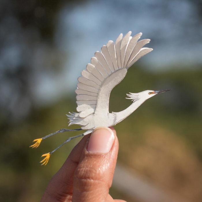 Straordinari uccelli in miniatura di carta ritagliata