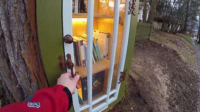 Albero Malato Trasformato In Biblioteca Little Free Library