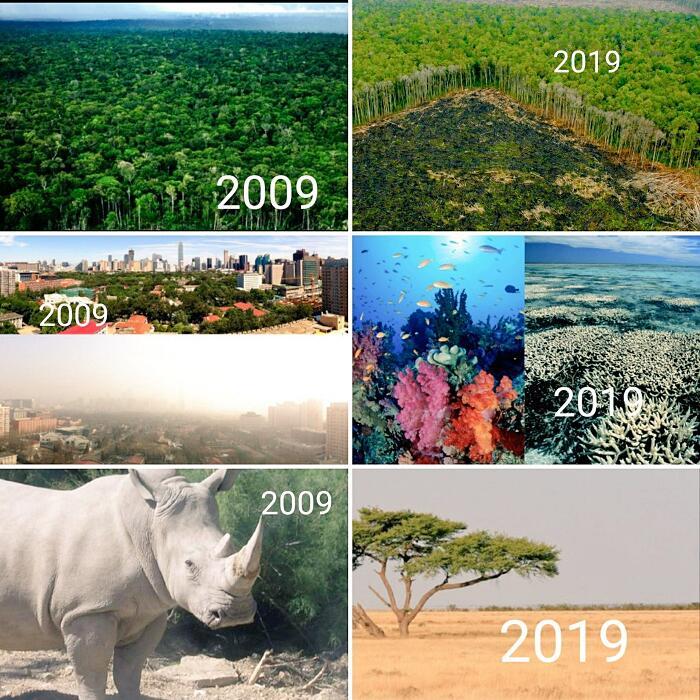 Effetti Cambiamenti Climatici Inquinamento 10 Year Challenge