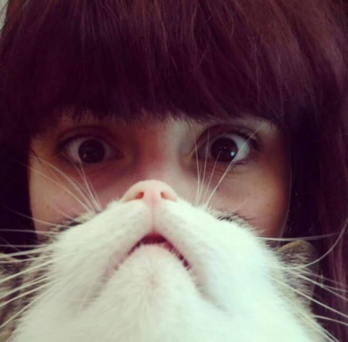 Selfie Divertenti Con Animali
