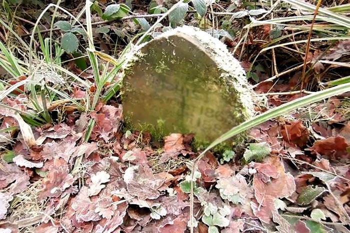 Trova una lapide nei boschi e dopo averla pulita fa una strana scoperta