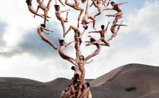 Ballerini posano in foto surreali che sfidano la gravità