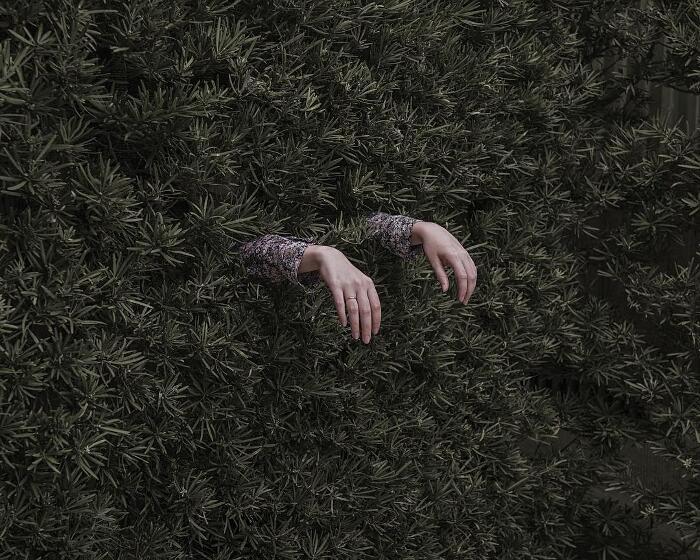 Fotografia Surreale Brooke DiDonato