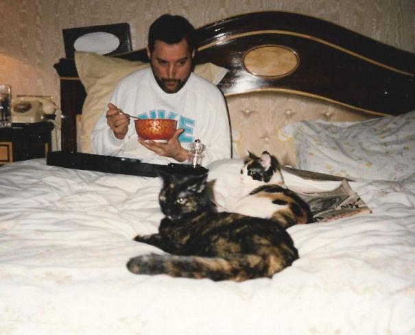 Foto di Freddie Mercury e i suoi gatti