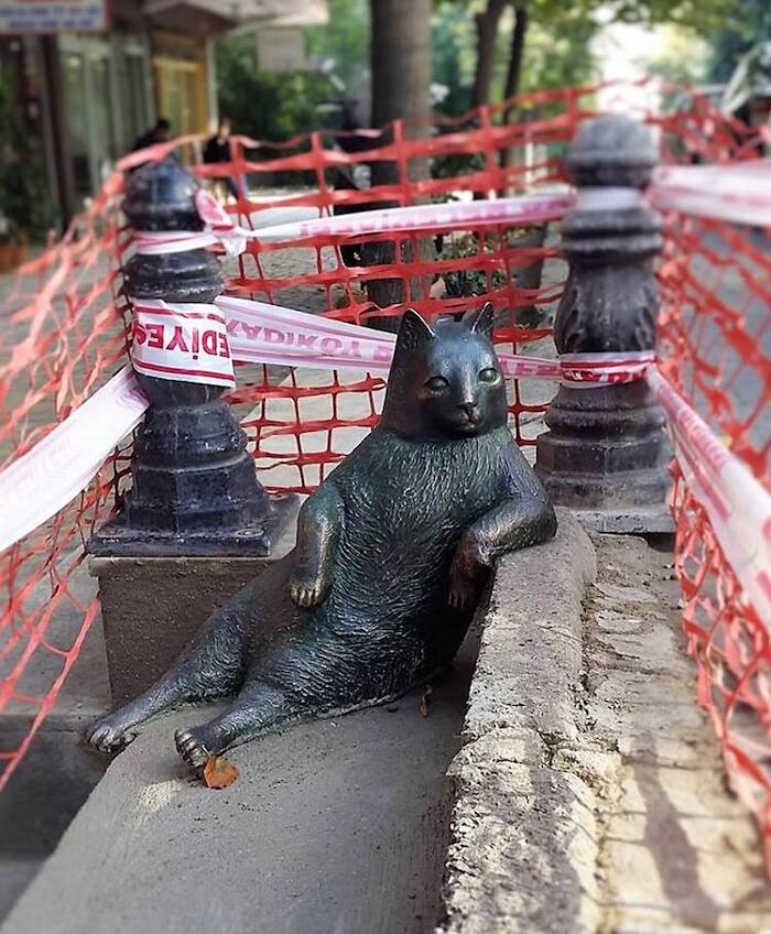 Statua Gatto Randagio Tombili Istanbul