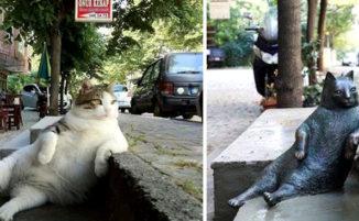 Instanbul: muore un gatto randagio molto amato e la città gli dedica una statua di bronzo