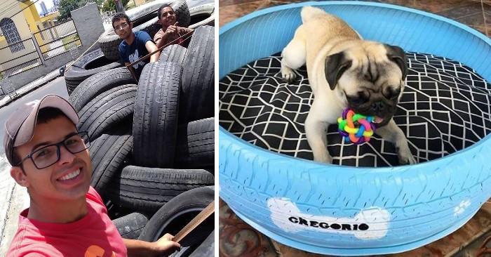 Artista Brasiliano Trasforma Vecchi Pneumatici in Letti Per Animali