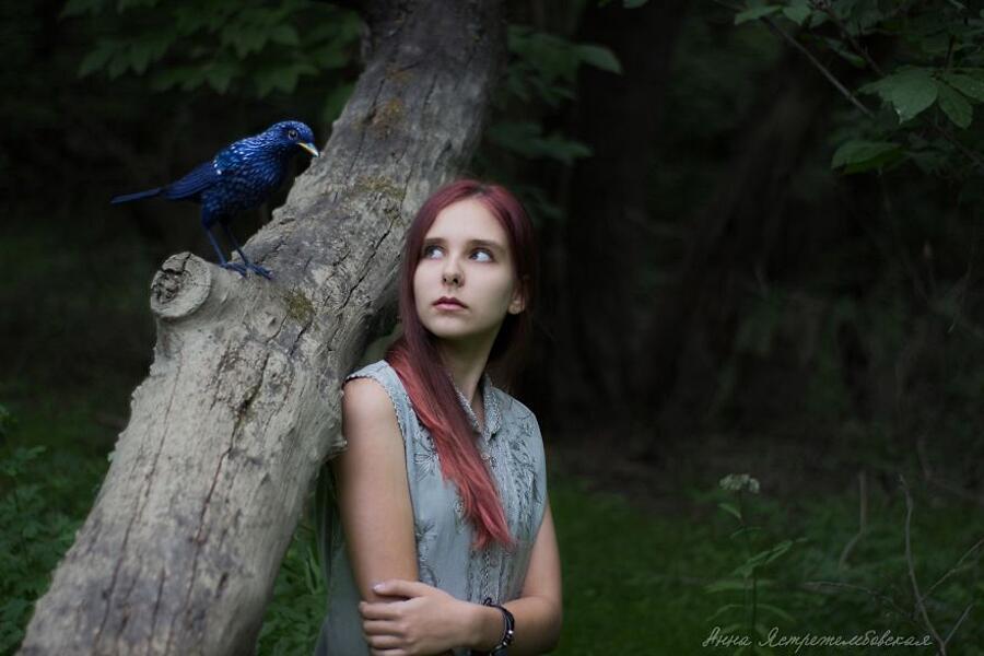 Animali In Feltro Anna Yastrezhembovskaya