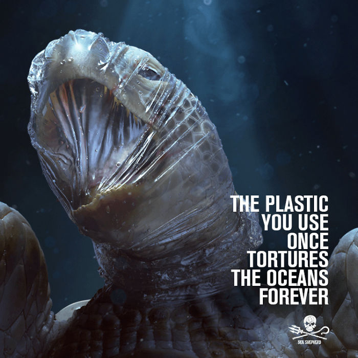 Campagna Shock Sull'Inquinamento Da Plastica Negli Oceani Sea Shepherd