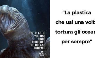 Campagna shock: ecco gli effetti dell'inquinamento da plastica sulla fauna selvatica