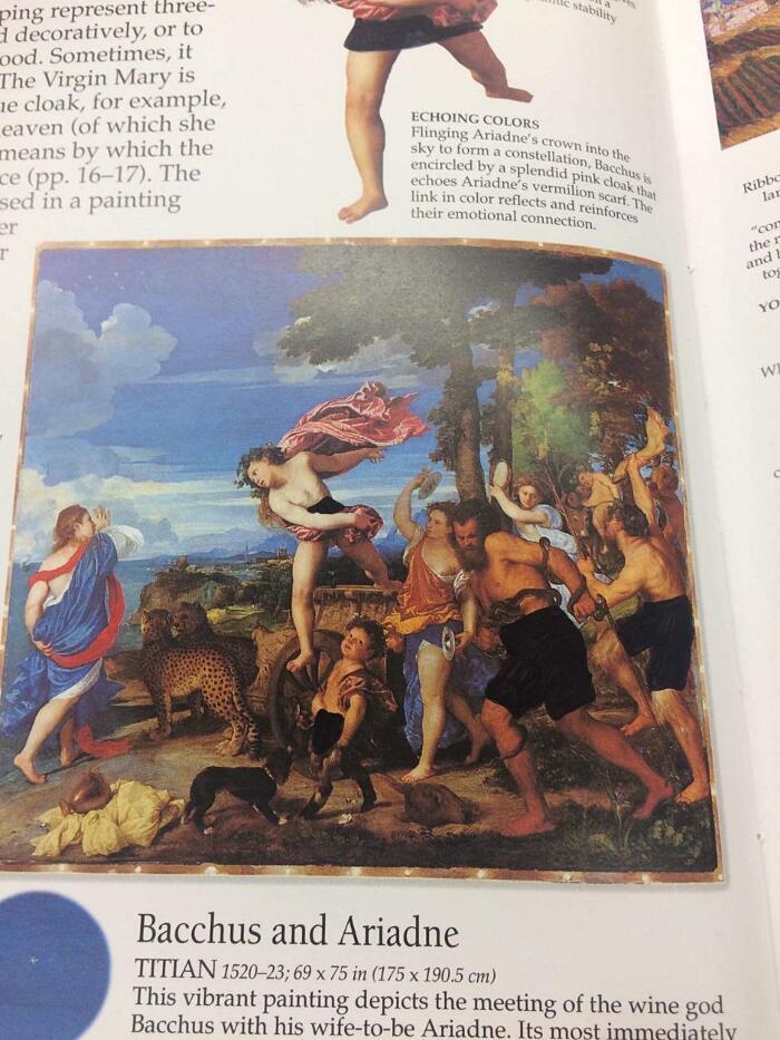 Libro Storia Dell'Arte Censurato Pensacola Christian College