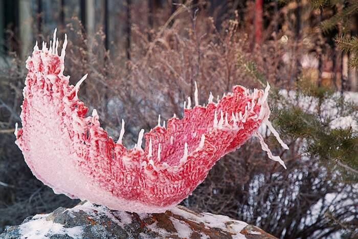 Artista congela abiti vintage trasformandoli in un bouquet di fiori