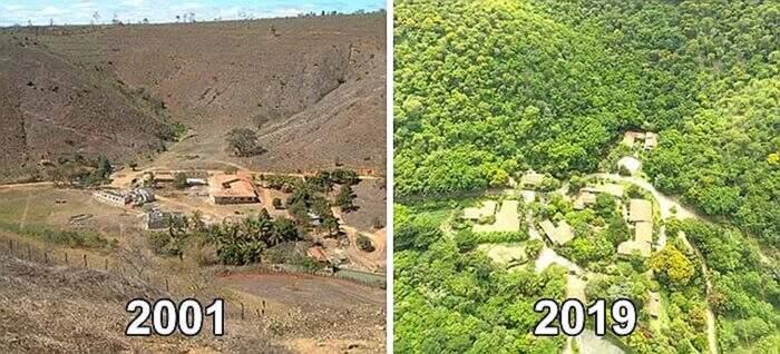 Marito e moglie piantano 2 milioni di alberi in 20 anni e risanano una foresta, Sebastião Salgado e Lélia Salgado