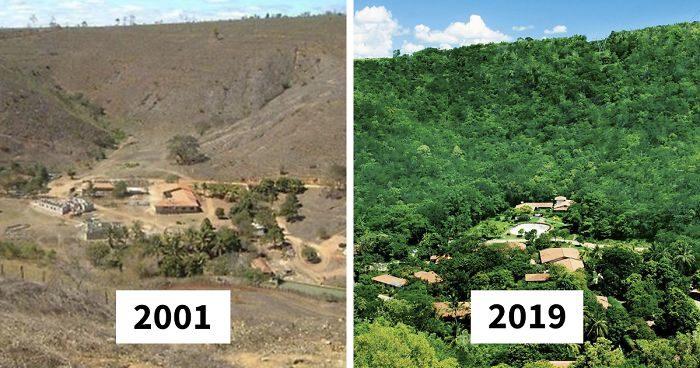 Marito e moglie piantano 2 milioni di alberi in 20 anni, risanano una foresta e gli animali ritornano
