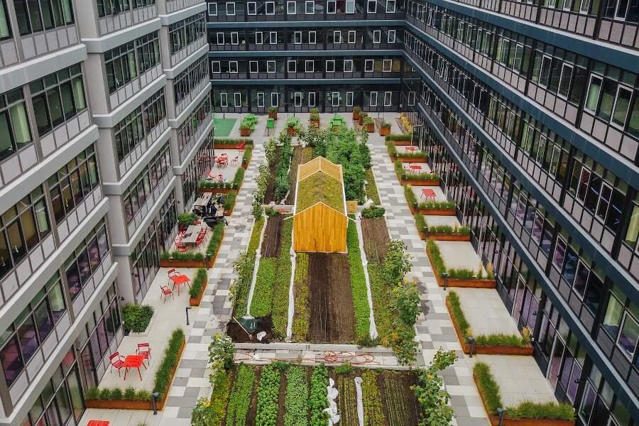 Un orto condominiale bio dinamico a New York: Urby