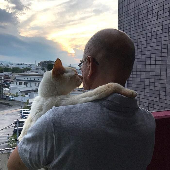 Uomini che amano i gatti