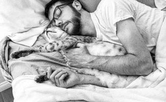 116 uomini che amano i gatti come fossero figli
