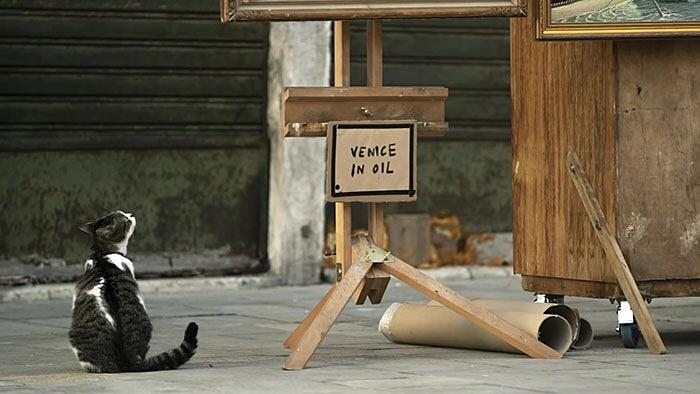 Banksy Biennale Di Venezia Video