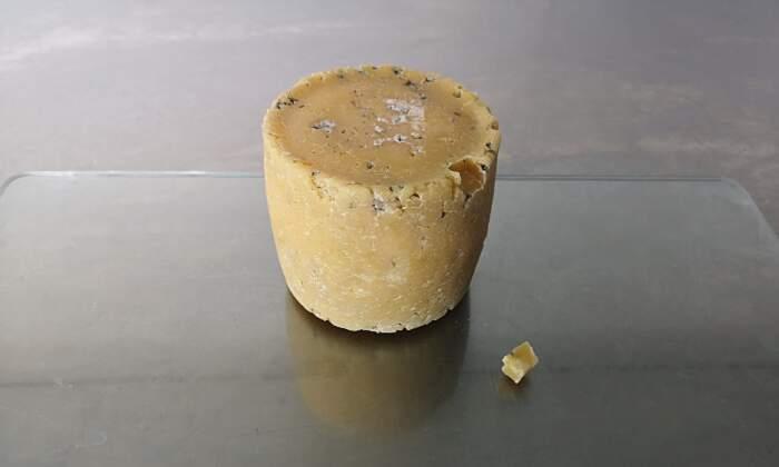 """Un """"formaggio umano"""" fatto con i batteri di ascelle e pubi di celebrità"""