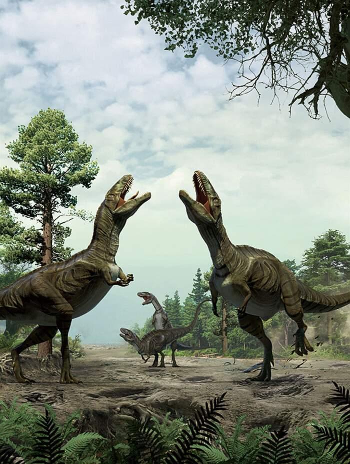 Il teropodo che ha lasciato l'orma dinosauro a Polcenigo, Friuli