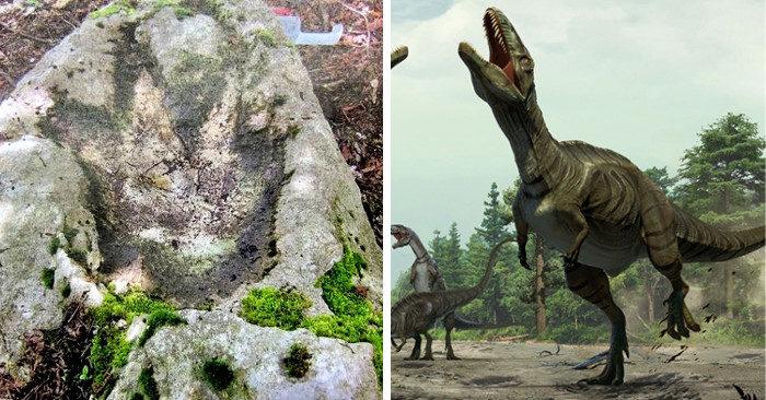A Polcenigo, Friuli, trovata l'orma di un dinosauro vissuto milioni di anni fa