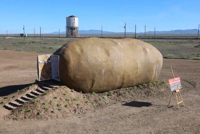 Su AirBnB c'è una stanza d'hotel a forma di patata e il suo interno è sorprendente
