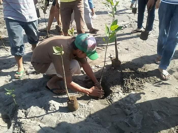 Ogni studente delle Filippine dovrà piantare 10 alberi per diplomarsi o laurearsi, secondo la legge