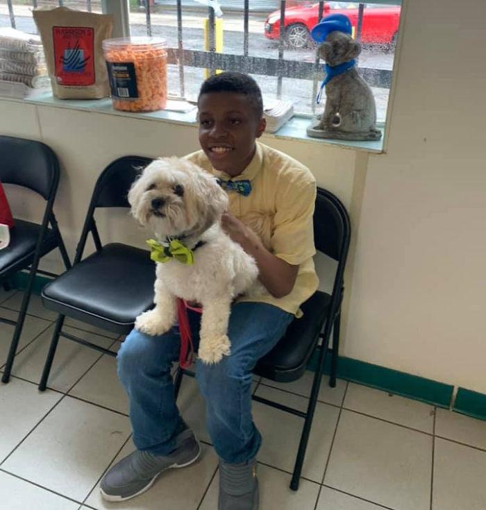 Bambino di 12 anni crea papillon per cani e gatti abbandonati e li aiuta a trovare una famiglia
