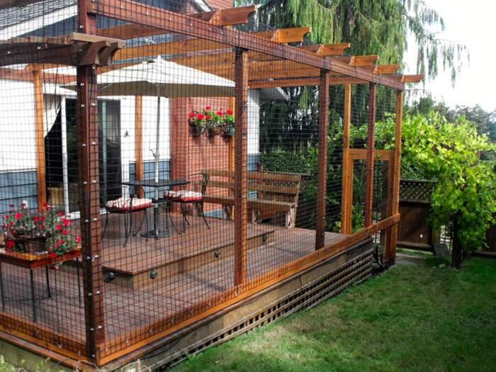 Catio, recinto per gatti in giardino