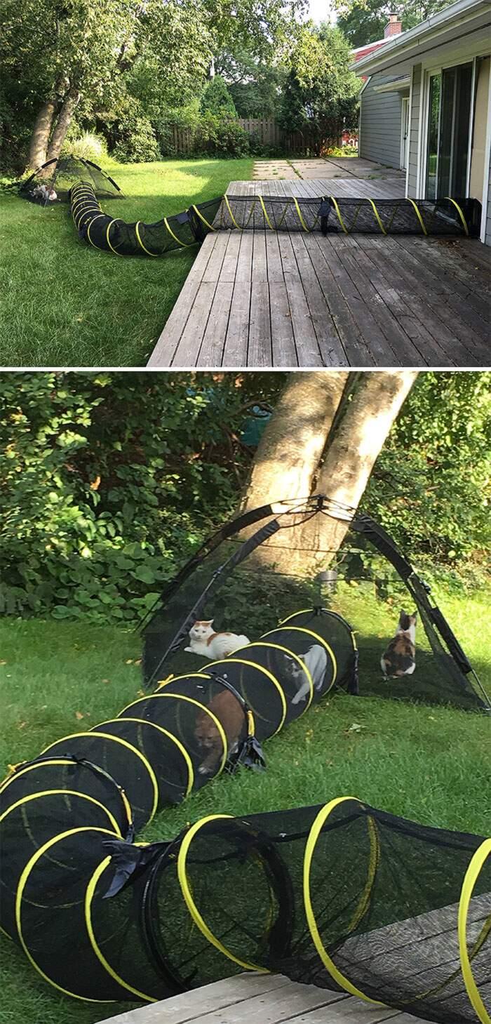 """Come Recintare Un Giardino un """"catio"""" o recinto per gatti in giardino, 45 idee per"""