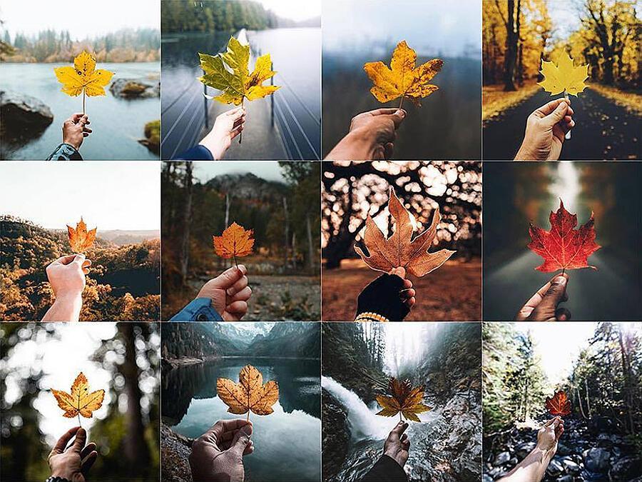 Foto identiche su Instagram