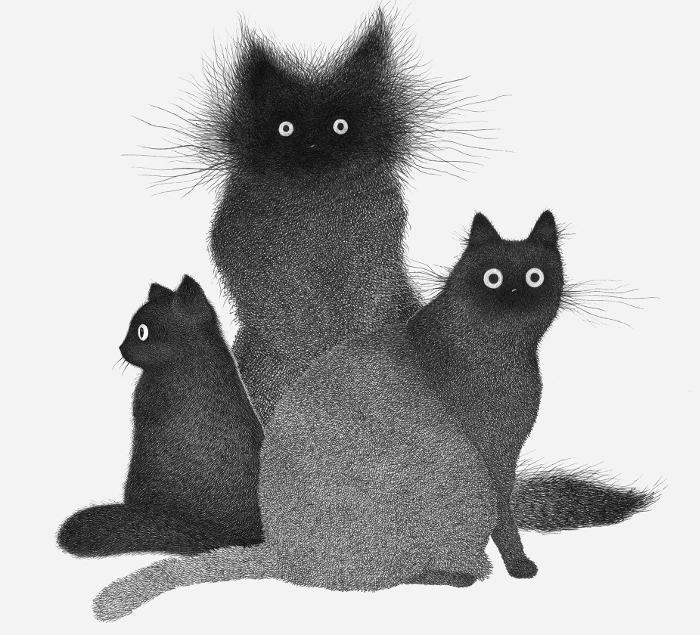 Gatti curiosi formati da centinaia di linee tratteggiate