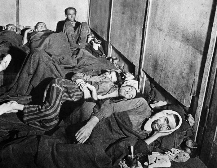 Suddiviso in diverse sezioni, nel campo i prigionieri erano divisi per etnia o nazionalità, isolati l'uno dall'altro, e circondati da filo spinato.