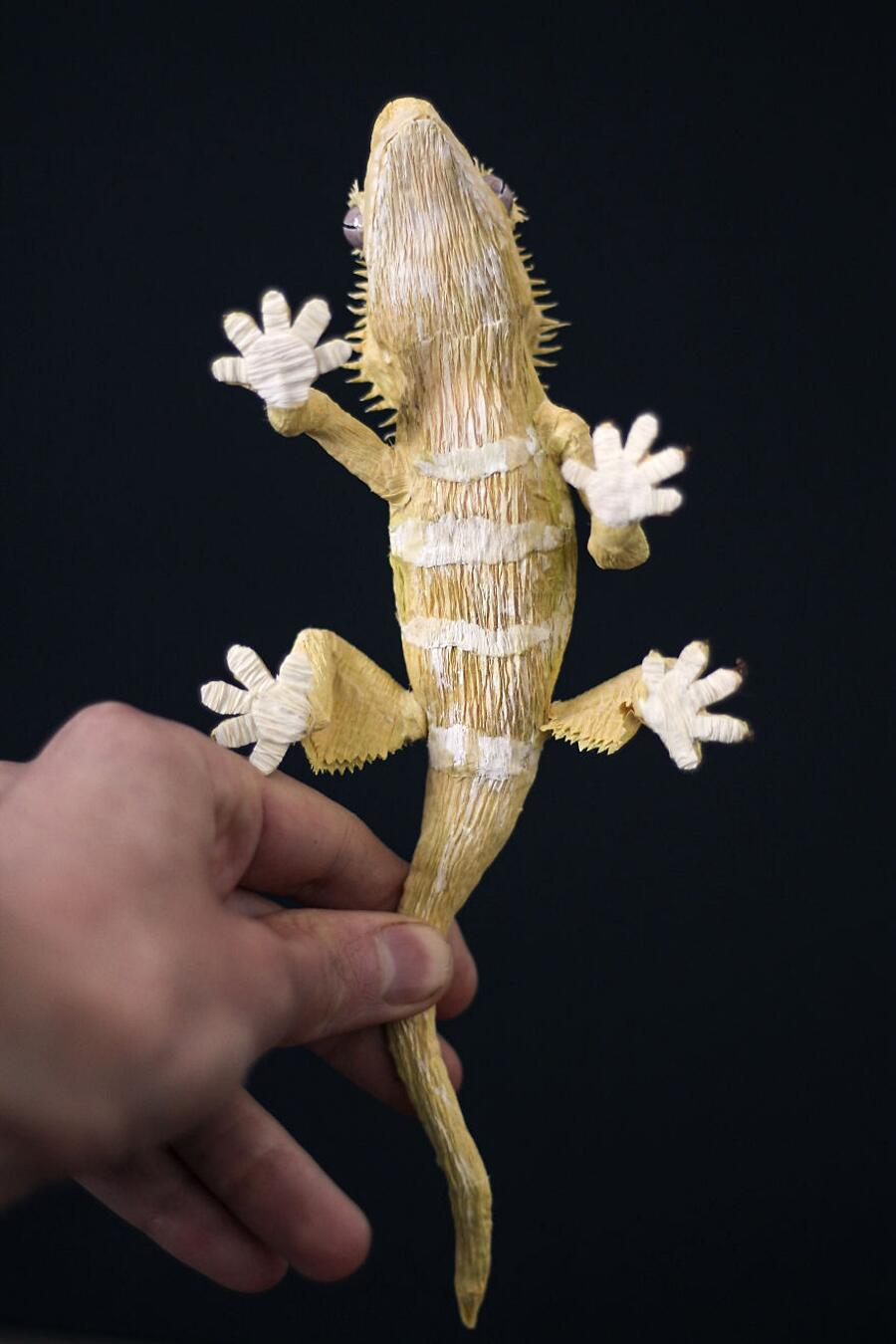 Sculture di Carta Animali Insetti Piante Tina Kraus