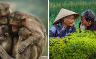 """Fotografi da tutto il mondo catturano il significato della parola """"amore"""""""