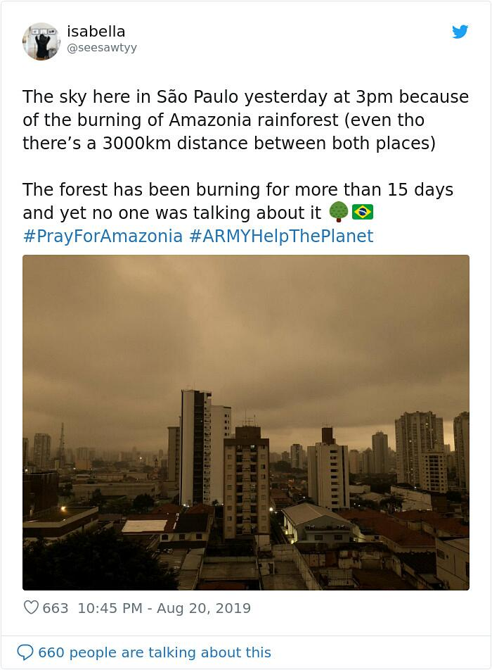 Foto San Paolo Oscurata A Causa incendi Foresta Amazzonica