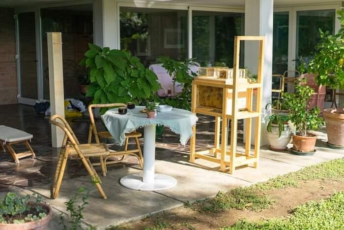 Con quest'arnia facile da usare puoi avere il miele in casa senza punture