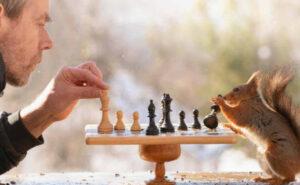 Dopo anni, fotografo conquista la fiducia degli scoiattoli e scatta foto adorabili