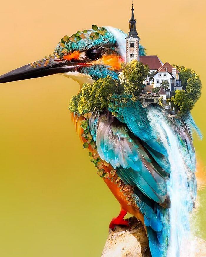 Fotomontaggi digitali Martijn Schrijver