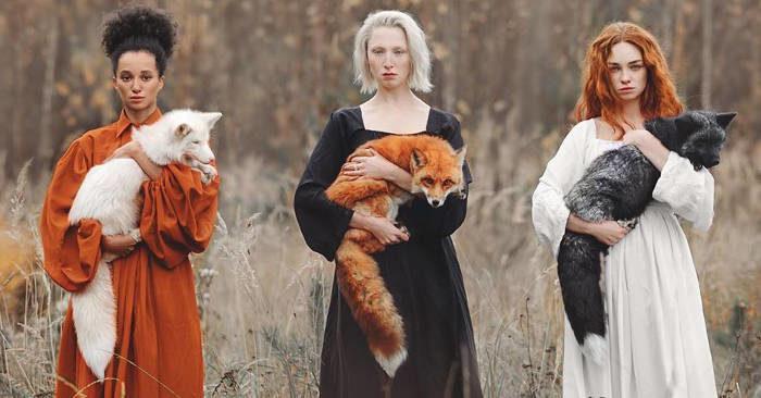 Tre sfumature di volpe: una singola immagine mostra le bellezze di questo animale