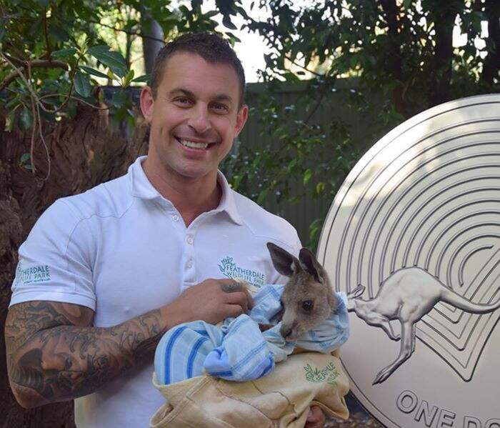 Direttore di zoo salva decine di animali dagli incendi australiani portandoseli in casa