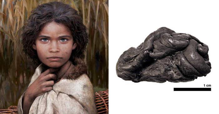 Ricostruita una donna preistorica dal DNA trovato in un'antica gomma da masticare