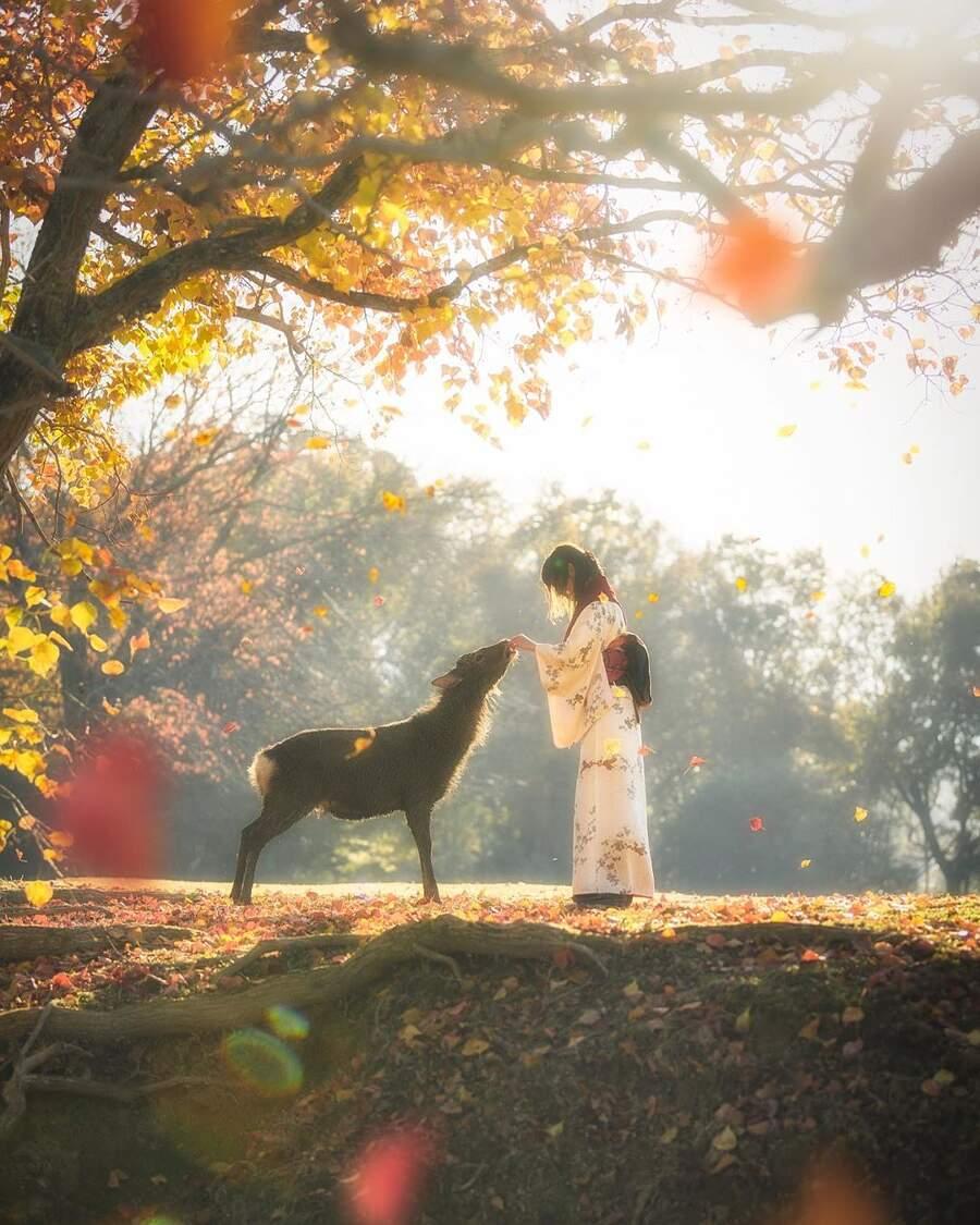Fotografo cattura un istante di fiaba autunnale con una ragazza e un cervo in Giappone